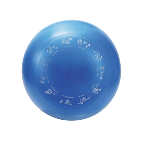 55cm Anti-Burst Gym Ball