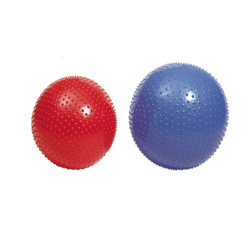 55cm Message Gym Ball